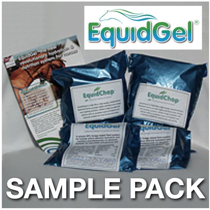 EquidGel Samples
